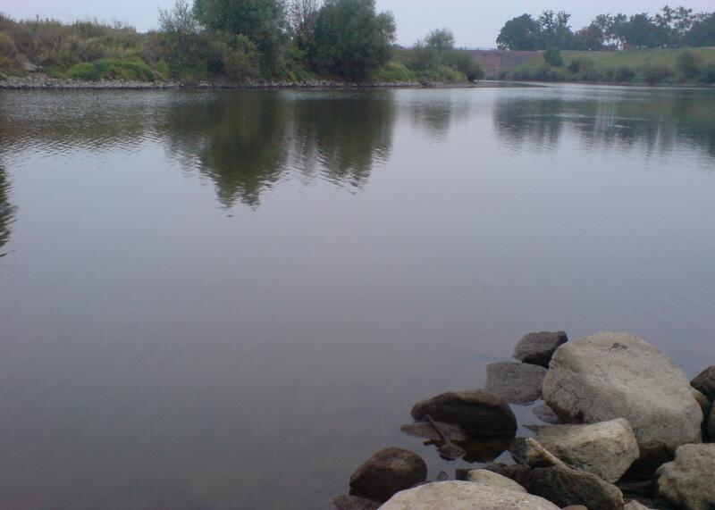 Łowisko sandacza